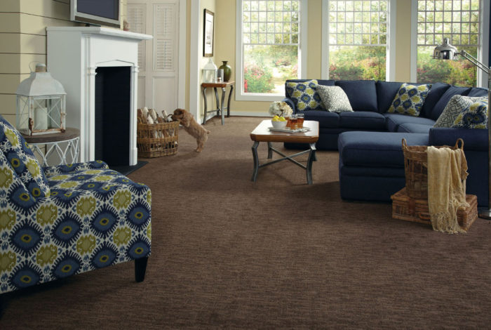 Carpet Coral Springs