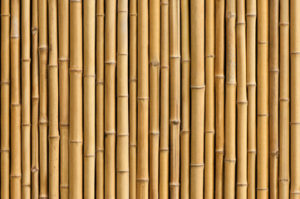 bamboo hardwood floors for your Coral Springs home