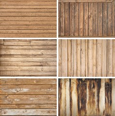 Various Hardwood Species and Which is Best for Your Floors